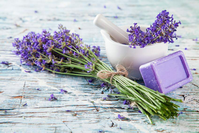 Lavender essential oil for skin care