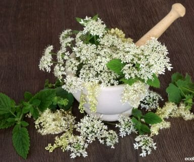 Natural Medicines For Swelling