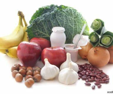 Great Health Benefits Of Probiotics