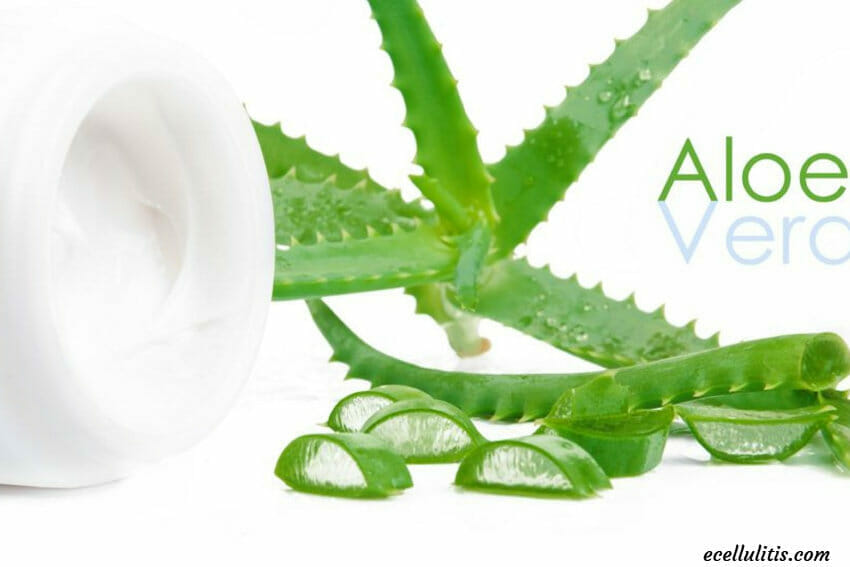 Aloe vera - benefits