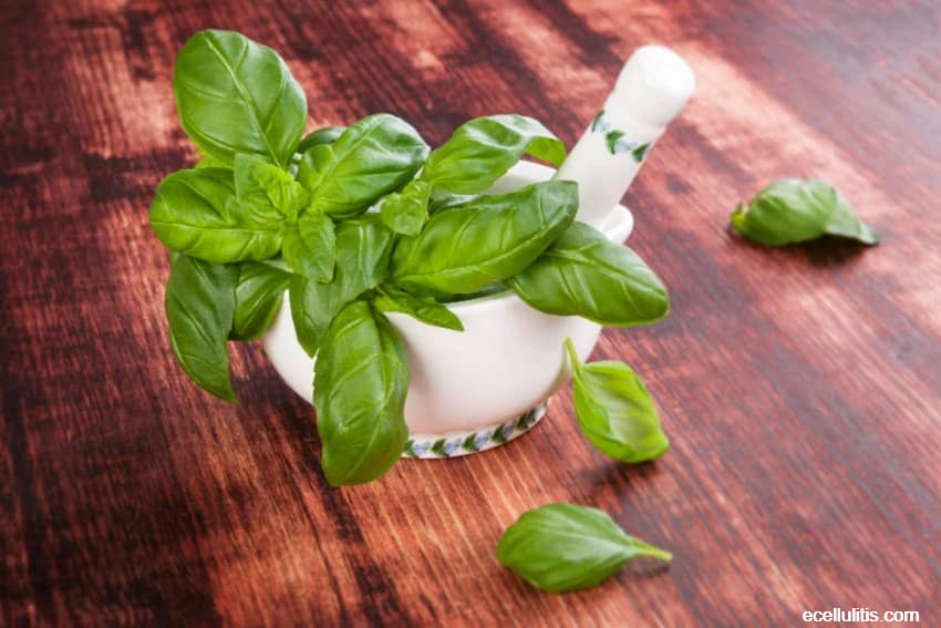 sweet basil have many benefits for our health