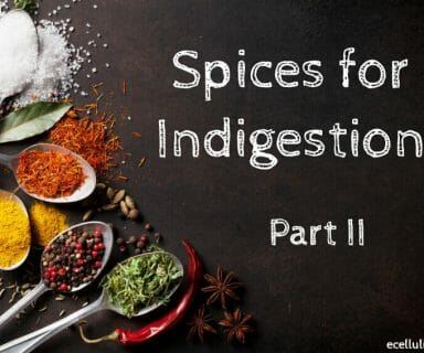 Spices For Indigestion – Find The Remedies In Your Kitchen – Part II