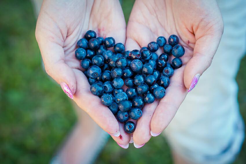 blueberries - snack under 100 calories