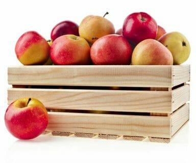 fruit storge