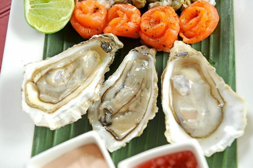 oysters - food for brain