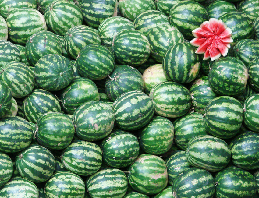 watermelons for digestion and health