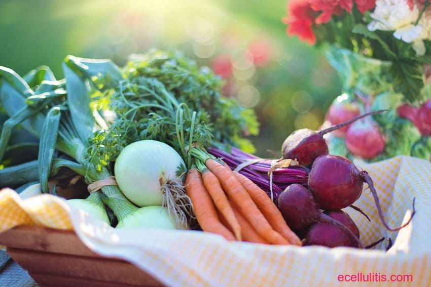 Books On Food, Nutrition And Health
