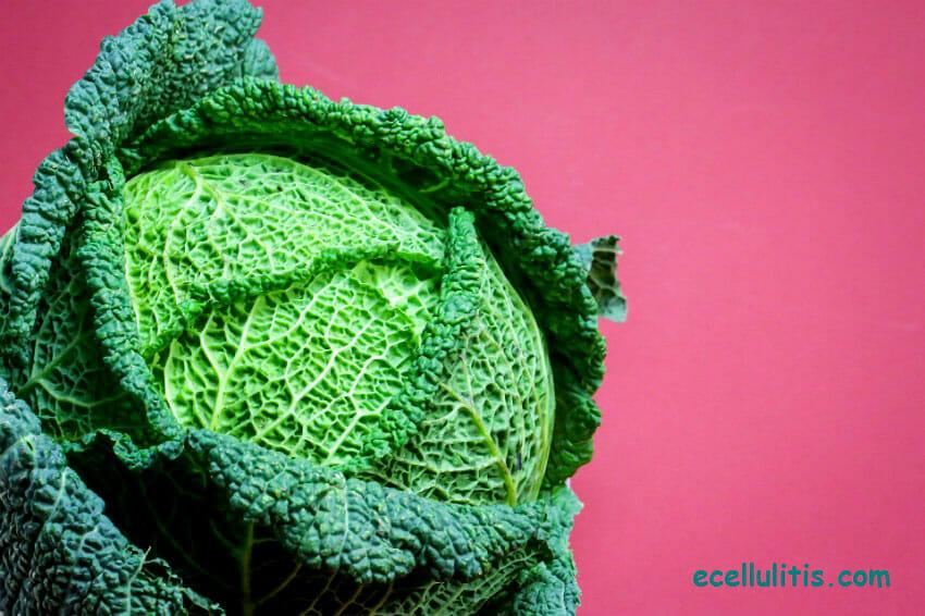cabbage & nursing