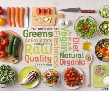 Vegan Diet – yes or no