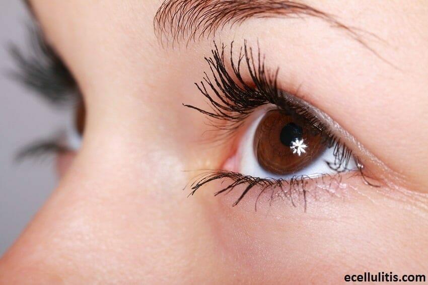 Health Benefits of Parsley - Promoting Eye Health