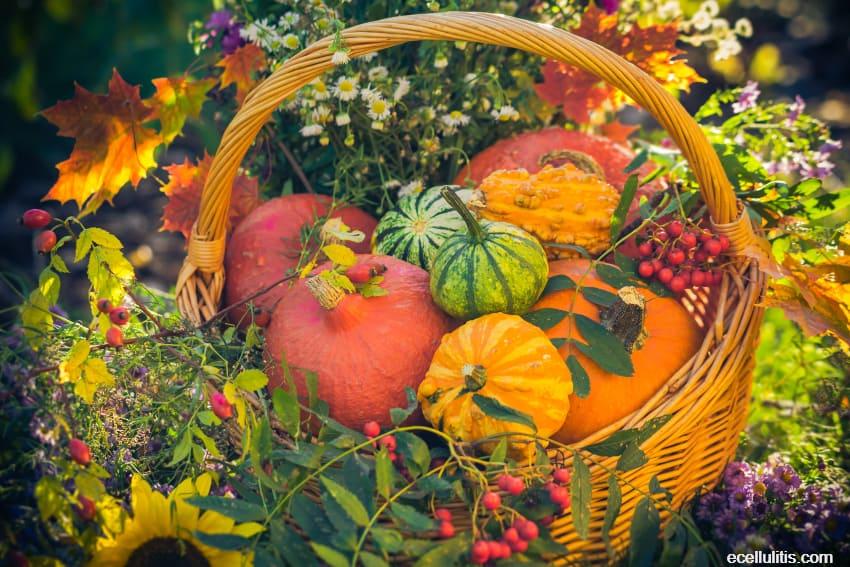 Pumpkins - Find Out their True Value