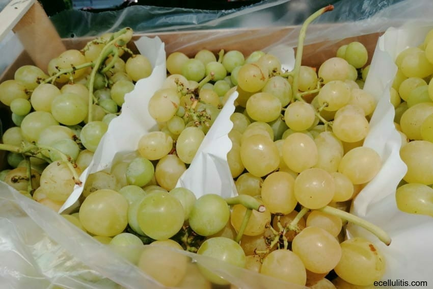 Cardiovascular benefits of grapes